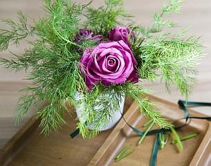 Koperek i róza