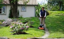 Narzędzia do pielęgnacji trawnika i roślin w ogrodzie