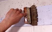 Dom po powodzi - jak zapobiegać zagrzybieniu